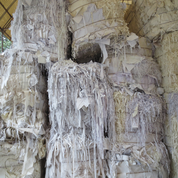 Raw Material for Paper Making